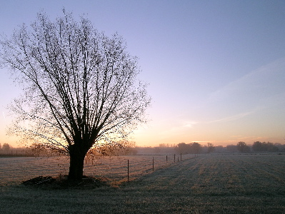 Picture of a sunrise over a wintery landscape