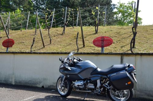 Touring the Alsace vineyards (Beblenheim, FR)