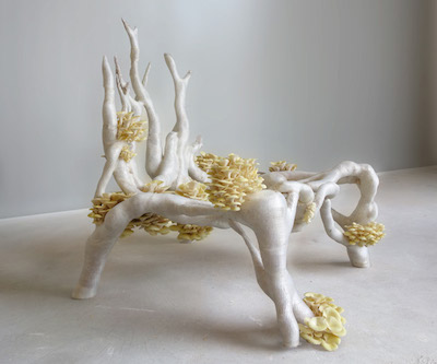 The Mycelium Chair, designd and produced by Eric Klarenbeek