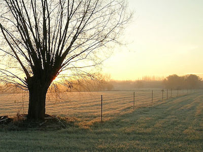 winter-sunrise.jpg