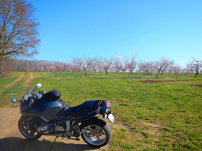 Blue sky, blossoms on the trees, touring on your motorcycle: spring is in the air!