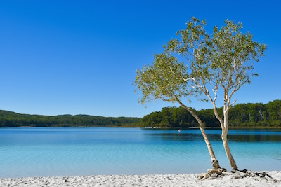 Lake Mckenzie (on Fraser Island, Queensland)